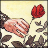 Desire's Rose