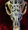 tribal fox skull