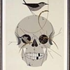 Skull with bird building a nest on top by artist Charley Harper