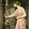 Pink Carnations Art