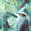 gandalf by larmay