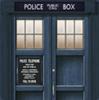 the doors of the thirteenth doctor's TARDIS