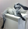 Rabbit reclining