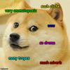 A doge meme