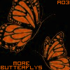orange butterflys; black background