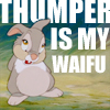 """""""Thumper is my waifu"""" in white over a picture of Thumper from Bambi. Don't worry, most people don't understand this icon even if they can see it."""