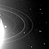 A black and white image of Neptune's rings