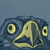 shocked hawk.gif