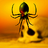 A picture of a large, black spider hanging down over a yellow background. A skull facing sideways is blurrily visible in the background.