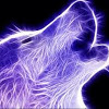 A wolf coloured with neon streams, howling against a black background