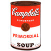 the primordial soup can