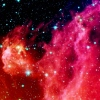 Picture of Infant Stars in Orion