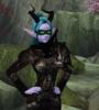 A combination of a Night Elf and Diablio III Demon Hunter atire on a Night Elf female 2.