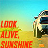 Look alive, sunshine