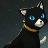 morgana from persona 5 in full cat form, in front of a stary night