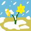 Two cartoon daffodils sitting in a snow drift, one drooping slightly while the other stands happily in the snow and faces the viewer.