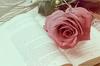 Rose and book by Sara-Morini on DeviantArt