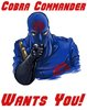 Cobra Commander Wants You! (Uncle Sam Poster Parody)