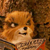 young fox reading a comic book