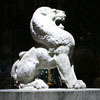 Thierry_Lei's lion icon