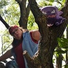 storyranger in a tree,  looking questioningly at a Gengar