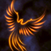 A glowing outline of a phoenix.