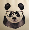 A panda wearing a pair of glasses.