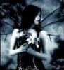 Dark Fae / My Muse