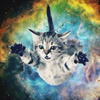 A kitten floating in space in front of a colourful nebula.