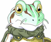 I am Sir Frog, Scourge of the Flies!