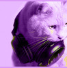 Violet Cat With Headphones