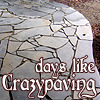 Days like crazypaving...