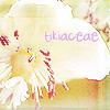 tikiaceae flower