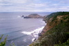 Brown cliff overlooking gray-blue ocean, with waves breaking at surf