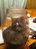 my sisters kitten in a pretzel jar