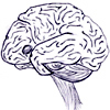 My brain is a friendly brain, with gleefully unworkable fic ideas, a prehensile brainstem, and a smile.