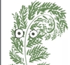 A sketchily drawn fern frond with googly eyes