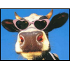 a photo of a cow wearing heart-shaped sunglasses.