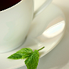 A sprig of mint by a teacup