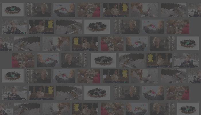 188金宝搏app众筹视频成本基准和最佳实践