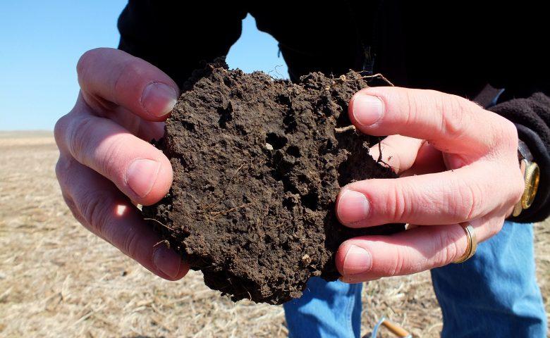 Porous Soil
