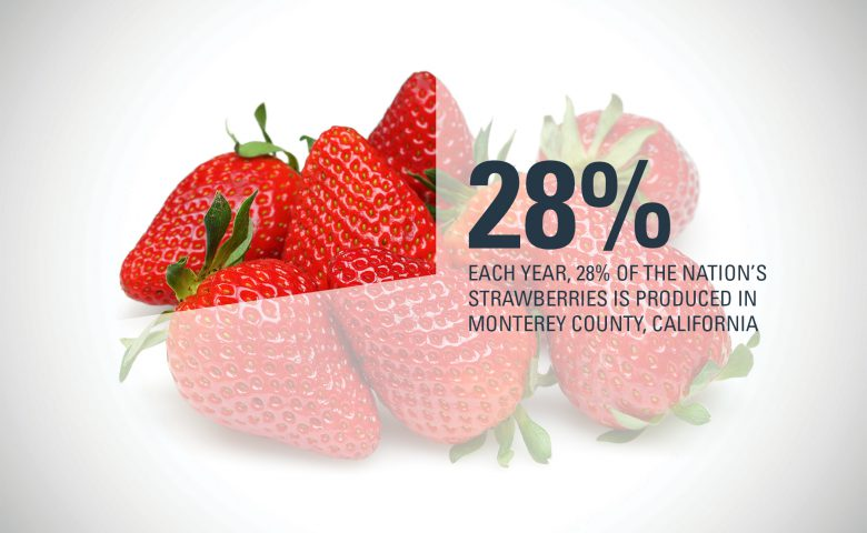 Monterey County Strawberry