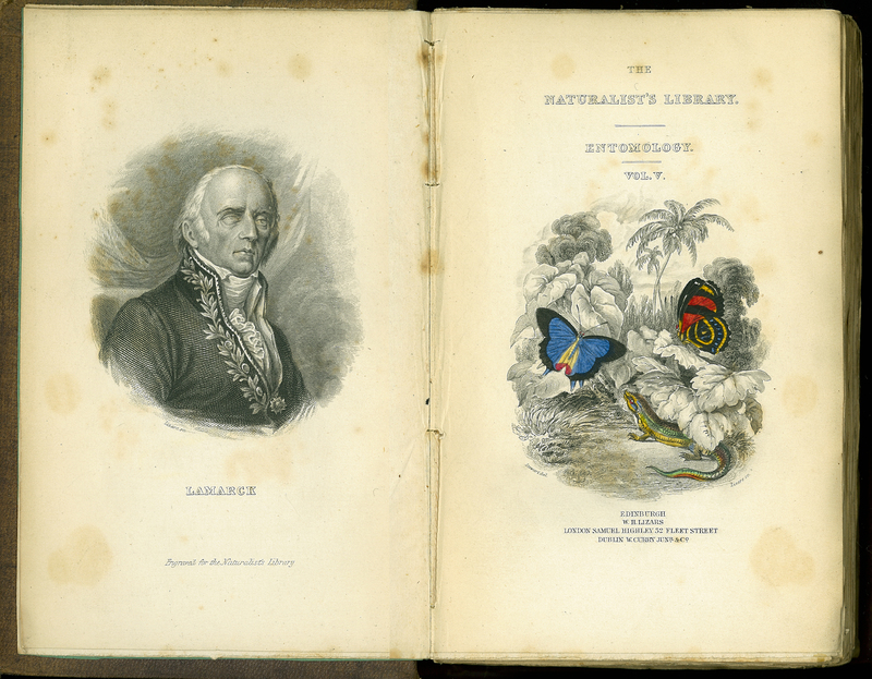 The Naturalist's Library: Entomology, Vol. 5, Foreign Butterflies