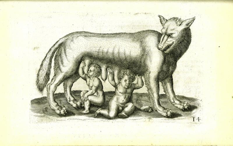 wolf nero xv