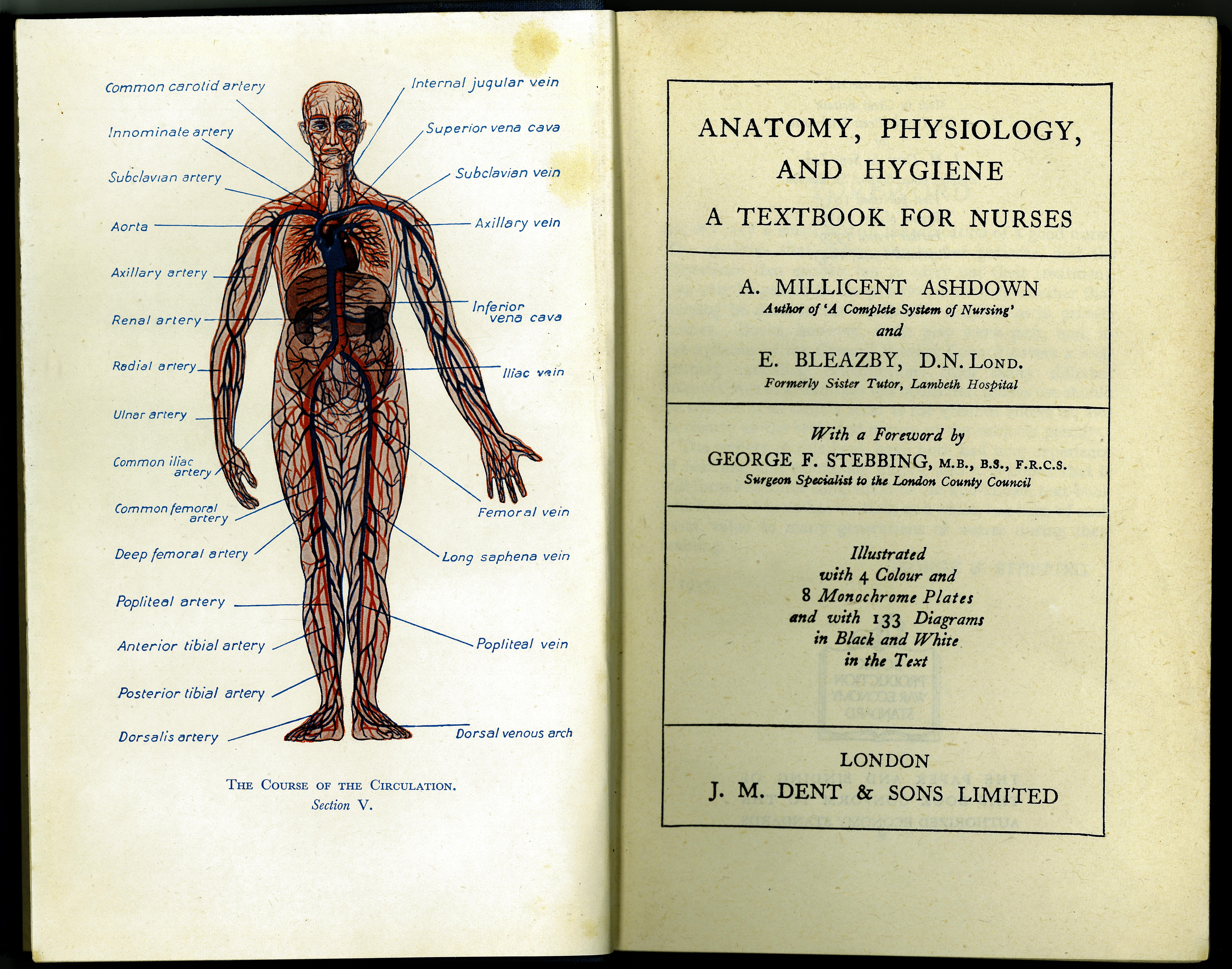 Anatomy, Physiology, and Hygiene: A Textbook for Nurses