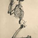 Kneeling Skeleton 600x800.jpg
