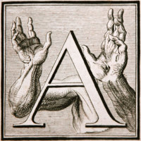 The letter 'A'.