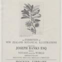 S16-588g   Ephemera - Hocken Exhibition Posters - WEB JPEGs.jpg