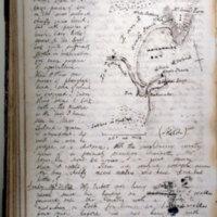 J.W. Barnicoat, Journals & diary.