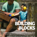 Truby King Foamboardsbuild blocks.jpg